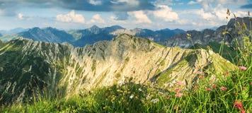 Grande vista alle montagne alla bella luce Fiori ed erba Fotografie Stock