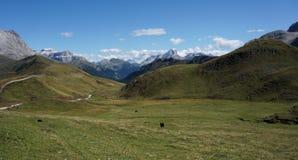 Grande vista da montanha da dolomite e do prado/para o sul de Tirol verdes em Italia Foto de Stock Royalty Free