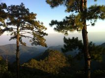 Grande vista del paesaggio delle montagne dell'albero in Tailandia Fotografia Stock Libera da Diritti