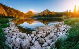 Grande vista dello stagno azzurrato Obersee che emette luce dalla luce solare Locati Fotografie Stock