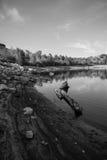Grande vista do lago Foto de Stock Royalty Free
