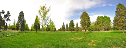 Grande vista panoramica di un giardino in primavera Immagini Stock