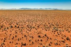 Grande vista sopra la pianura e la catena montuosa erbose del deserto Fotografia Stock Libera da Diritti