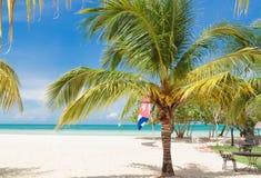 Grande vista stupefacente naturale della spiaggia dell'isola di Cochi di Cayo del cubano con la palma abbastanza lanuginosa in pr Fotografia Stock Libera da Diritti