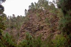 Grande vue au-dessus d'une forêt sur des formations de roche photo libre de droits