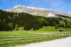 Grande vue des prés alpins avec le ciel bleu Photo libre de droits