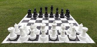 Grande xadrez na grama do jardim Foto de Stock