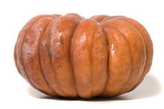 Grande zucca arancione Immagini Stock