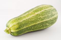 Grande zucchino Immagini Stock Libere da Diritti