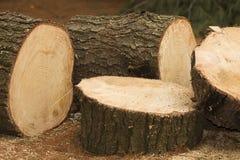 Grandes accumulations de bois de chauffage photo libre de droits