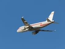 Grandes aviões Airbus-A319 Imagem de Stock Royalty Free