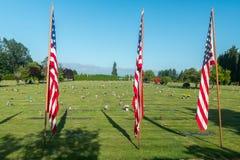 Grandes bandeiras americanas na frente das sepulturas do veterano Fotos de Stock Royalty Free