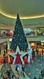 Grandes boutiques Manchester d'arbre de Noël Images stock