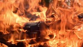 Grandes brûlures en bois d'un rondin dans un feu vid?o anim?e lente clips vidéos