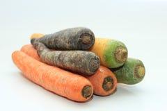 Grandes carottes fraîches Photos stock