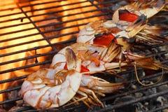 Grandes crevettes embrochées sur le gril chaud de BBQ Photos stock