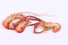 Grandes crevettes roses fraîches coulées d'isolement sur le fond blanc Photo stock