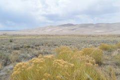 Grandes dunas de arena parque nacional, Colorado fotos de archivo libres de regalías