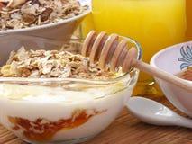 Grandes escamas con el yogur y la miel Foto de archivo libre de regalías