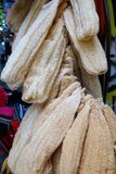 Grandes esponjas do mar Imagens de Stock Royalty Free