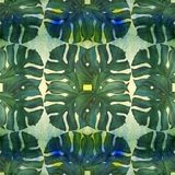Grandes feuilles des plantes tropicales Composition décorative sur un fond d'aquarelle Retrait d'aquarelle Images stock