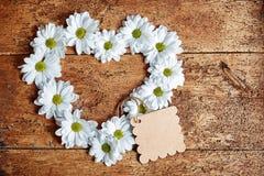 Grandes fleurs de marguerite dans la forme de coeur Image stock