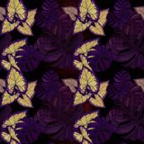 Grandes folhas de plantas tropicais Composição decorativa em um fundo da aquarela Desenho da aguarela Fotografia de Stock