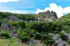 Grandes formações de rocha da pedra calcária no parkin Okinawa de Daisekirinzan Imagens de Stock Royalty Free