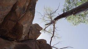 Grandes formations de roche brunes banque de vidéos