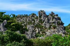 Grandes formations de roche de chaux dans le parkin l'Okinawa de Daisekirinzan image stock