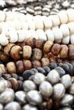Grandes grânulos de madeira Imagem de Stock Royalty Free