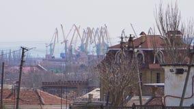 Grandes grues dans un port hors de ville clips vidéos