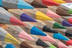 Grandes lápis bonitos de cores diferentes dos logs do tre fotografia de stock