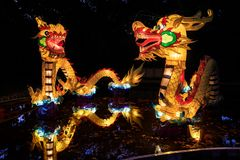 Grandes lanternas chinesas do dragão, fotografadas na noite imagens de stock