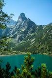 Grandes montagnes Photos stock