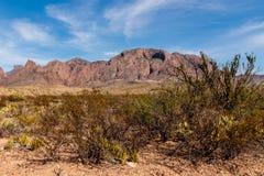 Grandes montagnes de désert de courbure Photographie stock