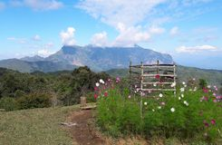 Grandes montanhas da pedra calcária Cenário bonito fotos de stock royalty free