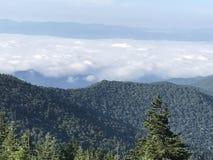 Grandes montanhas de Smokey Imagem de Stock