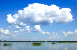 Grandes nuvens brancas Fotos de Stock Royalty Free