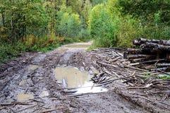 Grandes pás na estrada de terra Imagem de Stock Royalty Free
