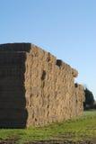 Grandes pacotes da palha no campo. Fotografia de Stock