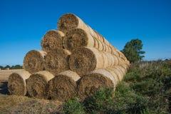 Grandes pacotes de feno redondos empilhado no campo após a colheita fotografia de stock royalty free