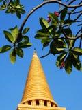 Grandes pagoda et fleur Images libres de droits