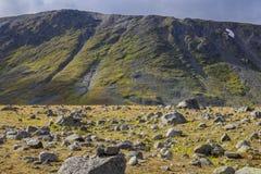 Grandes pedras no campo antes da inclinação grande na tundra nos Ural Subpolar fotografia de stock