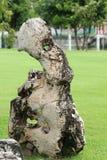 Grandes pedras usadas para decorar o gramado Fotografia de Stock Royalty Free