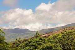 Grandes pedregulhos monumentais lisos em Seychelles Fotos de Stock
