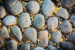 Grandes pierres, feuilles d'automne Photos stock
