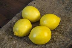 Grandes pinturas de vista do limão para saladas e molhos na cozinha, imagens orgânicas naturais do limão da loja da vitamina de c Imagem de Stock Royalty Free