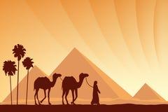 Grandes pirâmides de Egito com a caravana do camelo no fundo do por do sol Imagem de Stock