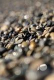 Grandes quantidades de seixos molhados Imagens de Stock